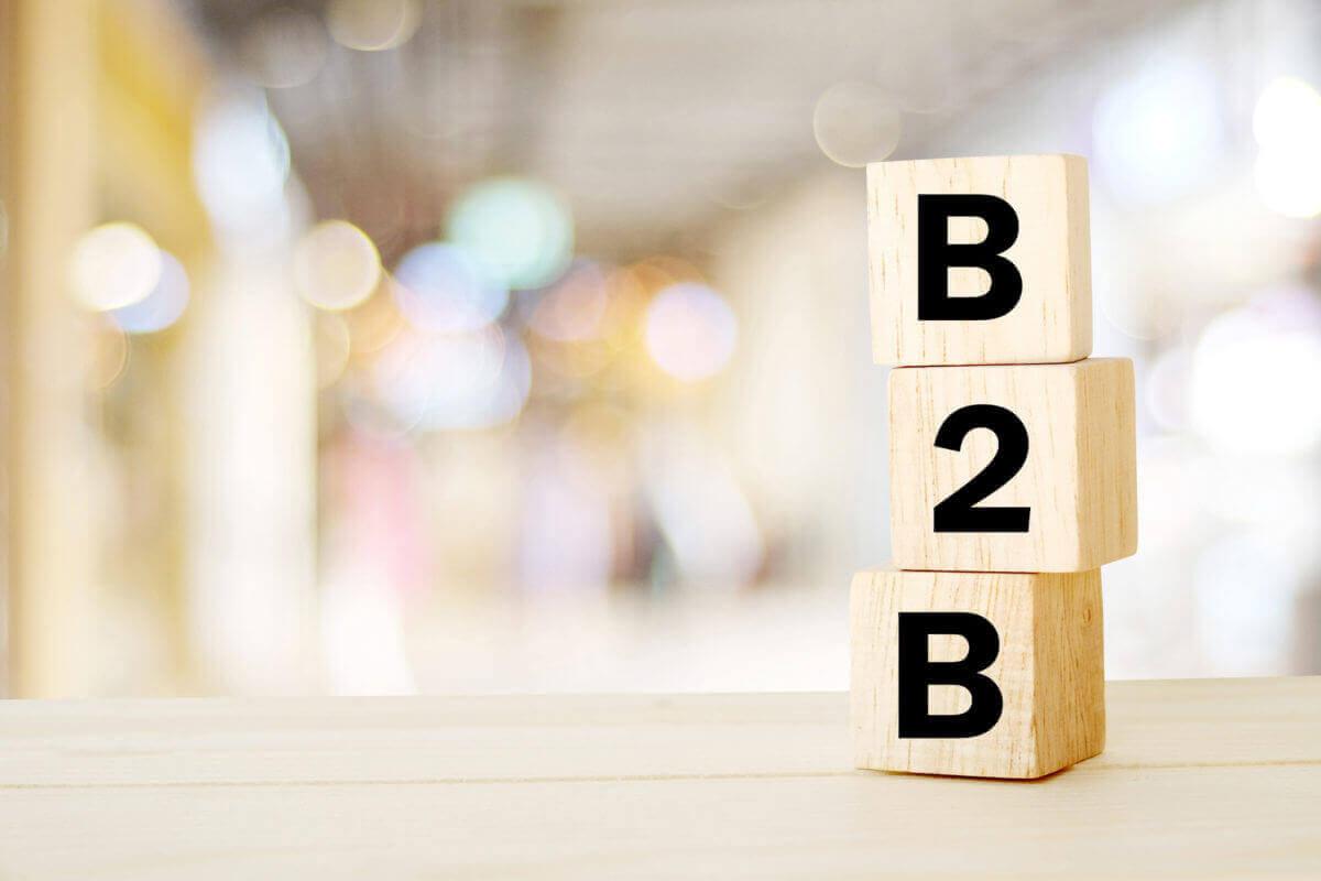 b2b loyalty programs